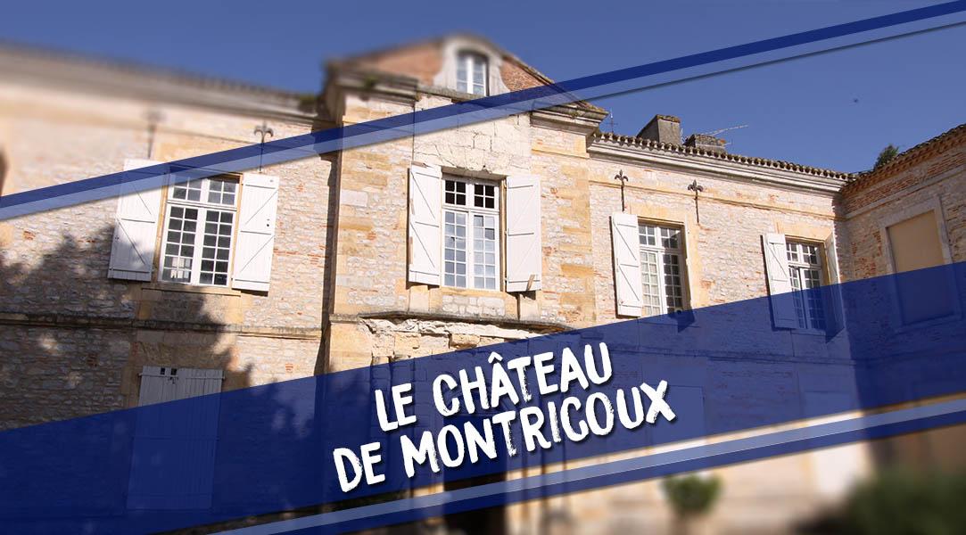 chateau de montricoux